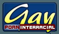 Gay Porn Interracial logo